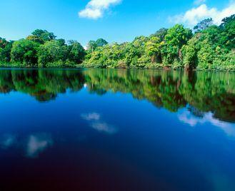 Costa Rica Wildlife Discovery
