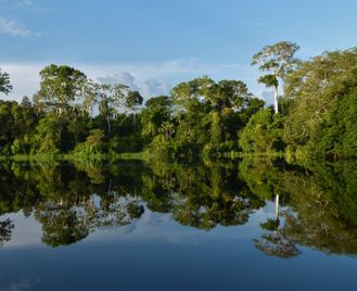 Off The Beaten Track Colombia: San Agustin And The Amazon