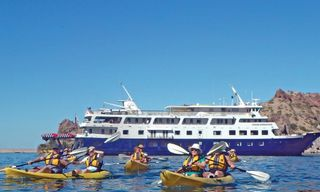 Mexico Expedition Cruise: Baja California And The Sea Of Cortez