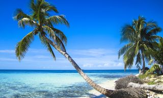 Signature Belize: Rainforest, Reef And Ruins