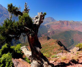 4000m Peaks of Morocco