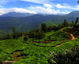 Kerala and the Cardamom Hills