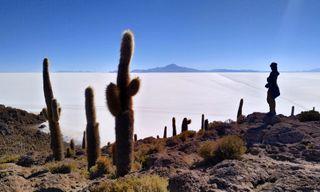 Salt Flats and Volcanoes of Bolivia