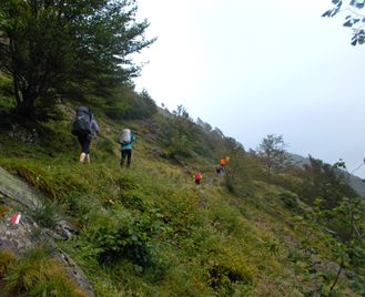 Walk to Freedom across the Pyrenees