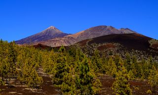 Walking Undiscovered Tenerife and Pico Teide