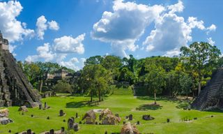 In the Footsteps of the Maya