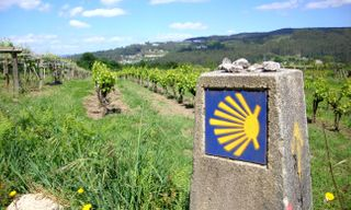 Self-Guided Camino: The Portuguese Way