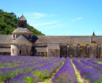 Self-Guided Walking in Provence