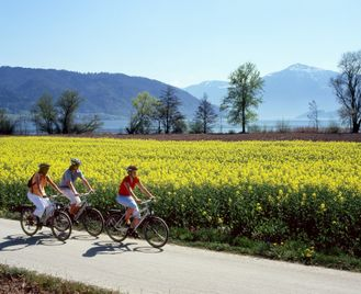 Self-Guided Cycling In Switzerland
