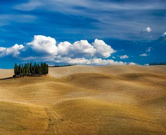 Classic Cycling Tour of Tuscany