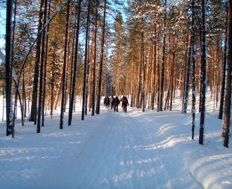 Finland Wilderness Snowshoe Adventure