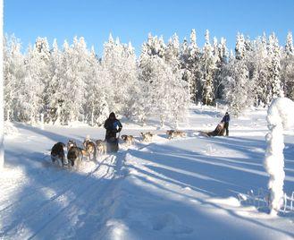 Finland Winter Activity Week
