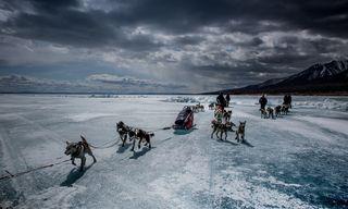Lake Khuvsgul Dog Sled Adventure