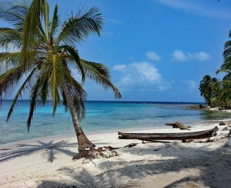 Wild Costa Rica and Panama