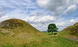 Self-Guided Walking: Hadrian's Wall