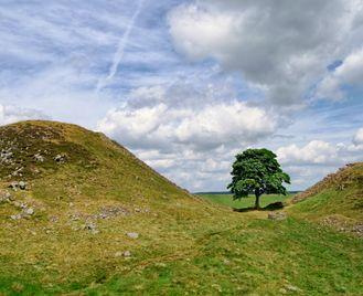 Self-Guided Walking: Hadrian's Wall