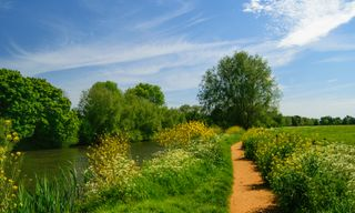 Self-Guided Walking: The Thames Path. Kemble to Oxford