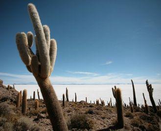 Incas & Conquistadors of Peru & Salt Flats of Bolivia - 16 days from £3028 inc flights