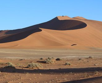 Wildlife and Wilderness of Namibia - 15 Days from £2899 inc flights