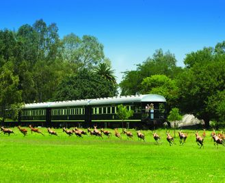 Cape Town & Rovos Rail - 10 Days From £2699