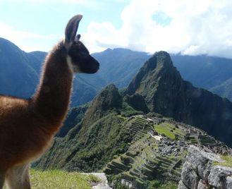 Lima To La Paz (30 Days) Peru & Bolivia Encompassed