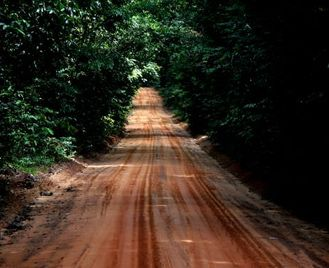 Rio To Manaus Via The Guianas (57 Days) Tropics Of South America