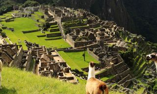 Machu Picchu Experience – Independent