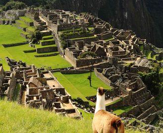 Machu Picchu Experience – Independent