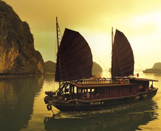 Vietnam Snapshot