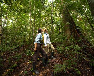 Peruvian Paradise: Machu Picchu & Amazon - 12 Days