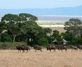 Great Plains Conservation Kenya Safari