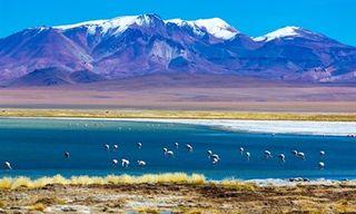 Highlights Of Chile - Atacama Desert, Lakes & Torres Del Paine