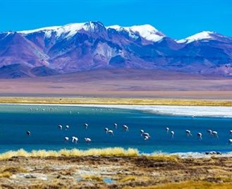 Highlights Of Chile - Atacama Desert, Lakes & Torres Del Paine