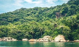 Emerald Coast Discovery
