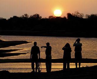 Zambia Walking Safari - Luangwa  Encounter