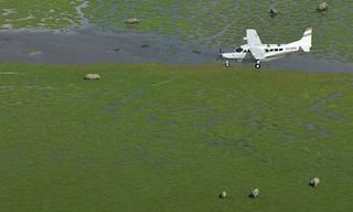 Kenya Ultimate Fly-In Safari