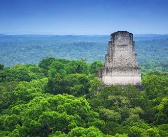 The Mayan World