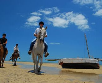 Mozambique Horse Riding Safari