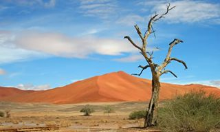 Namibia Luxury Flight Safari