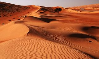 Sur And Wahiba Sands Guided Tour