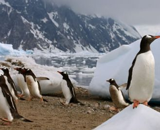 Antarctica Air Cruise