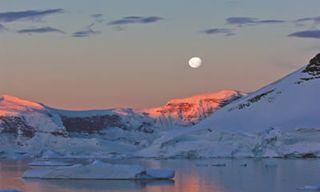 Complete Antarctica, Falkland Islands & South Georgia
