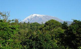 Kilimanjaro Group Climb - Lemosho Route