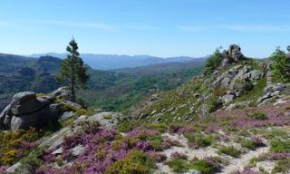 Wilderness Parks Of Northern Portugal