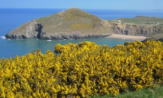 Ceredigion And The Pembrokeshire Coast