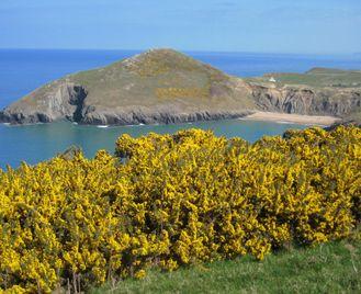 Ceredigion And The Pembrokeshire Coast