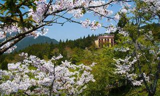 National Parks Of Taiwan Tour