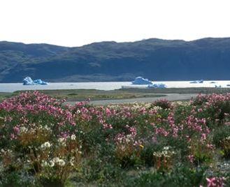 South Greenland Short Break