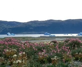 Grand Tour Of South Greenland