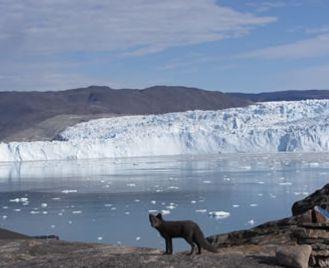 Disko Bay & Eqi Glacier
